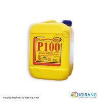 رزین سنگ و نما NSG-P100 ده لیتری